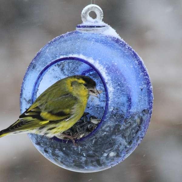 Cantine des oiseaux, design GRIM DESIGN, © Claudy Stenger